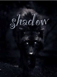 Shadow's bio ^^ Images11