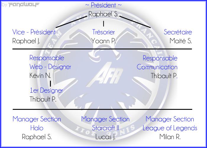 L'association dans son ensemble Organi10