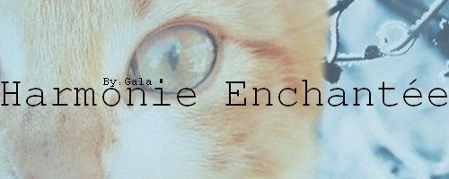 Harmonie Enchantée Eline10