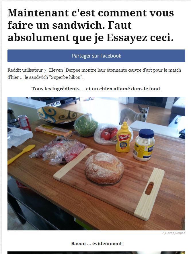 le sandwich de folie French10