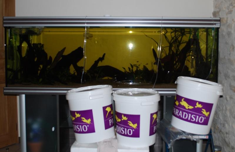 On ne s'ennuis pas en aquariophilie/ aquarium 830 litres  - Page 2 Acclim10