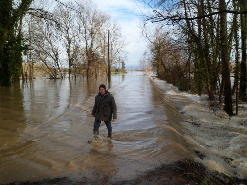 Alerte à la crue de la Garonne -  Inondation - Page 2 Sam_3011