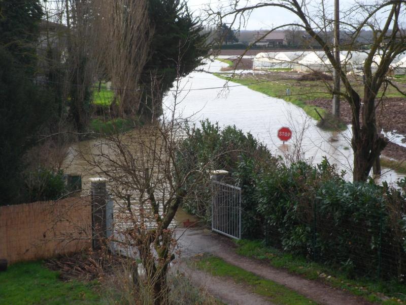 Alerte à la crue de la Garonne -  Inondation - Page 2 Sam_3110