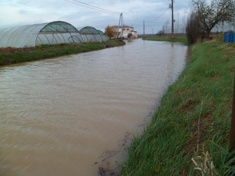 Alerte à la crue de la Garonne -  Inondation - Page 2 Sam_3113