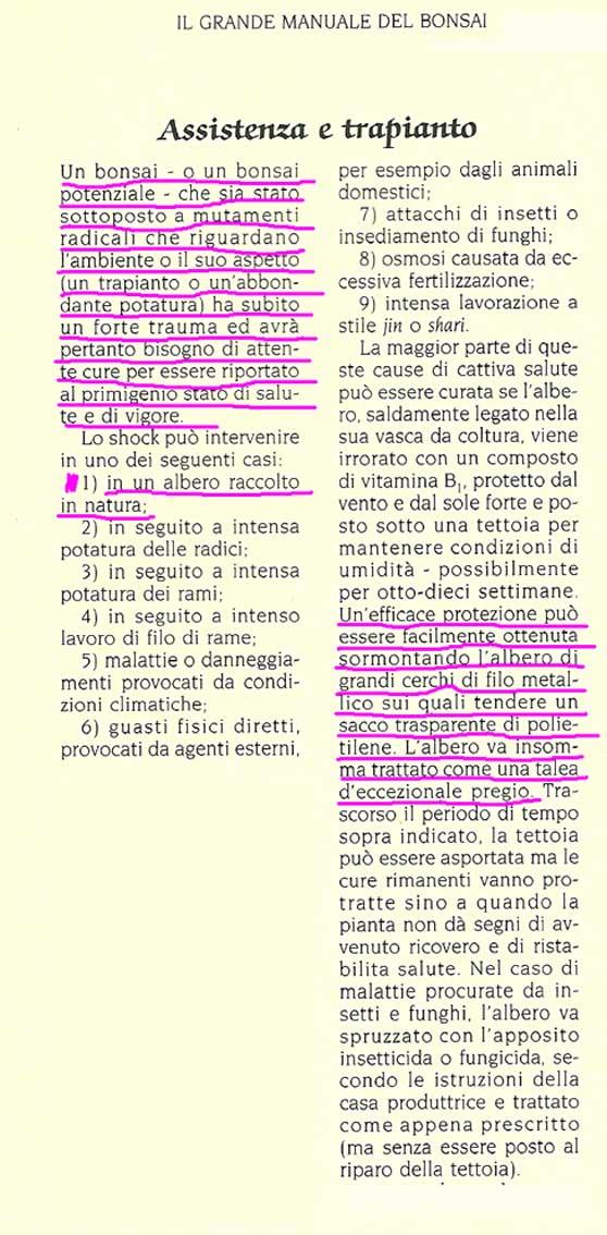 La tecnica dell'imbustamento - Pagina 9 Dan-ba10