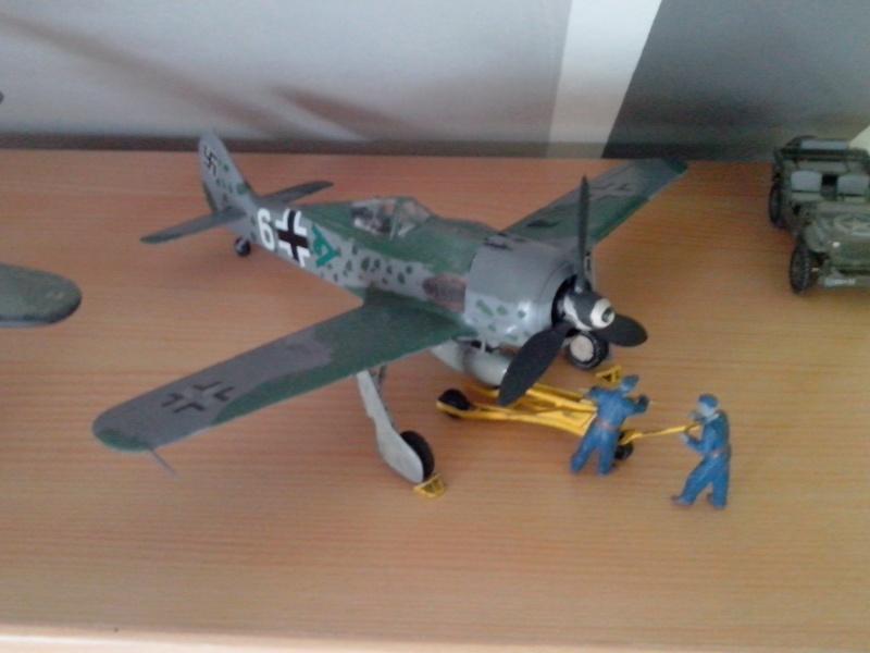 Fw 190-F8 1/48 Img_2013