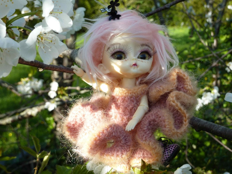 bébés hujoo et petites fairy : nouvelles photos P1020422