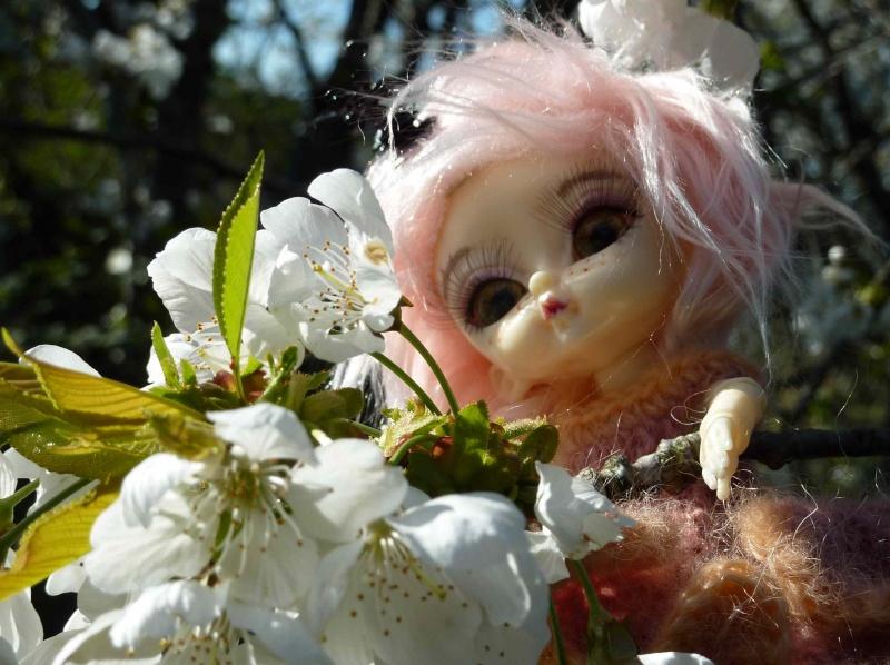 bébés hujoo et petites fairy : nouvelles photos P1020423