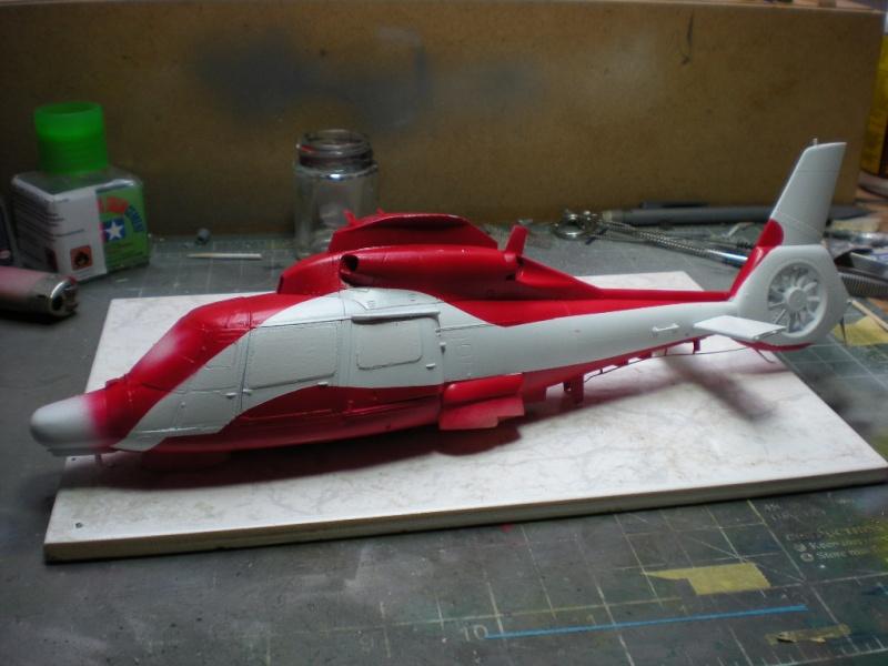 AS-365F Panther - Kitty Hawk - 1/48 Dscn6815