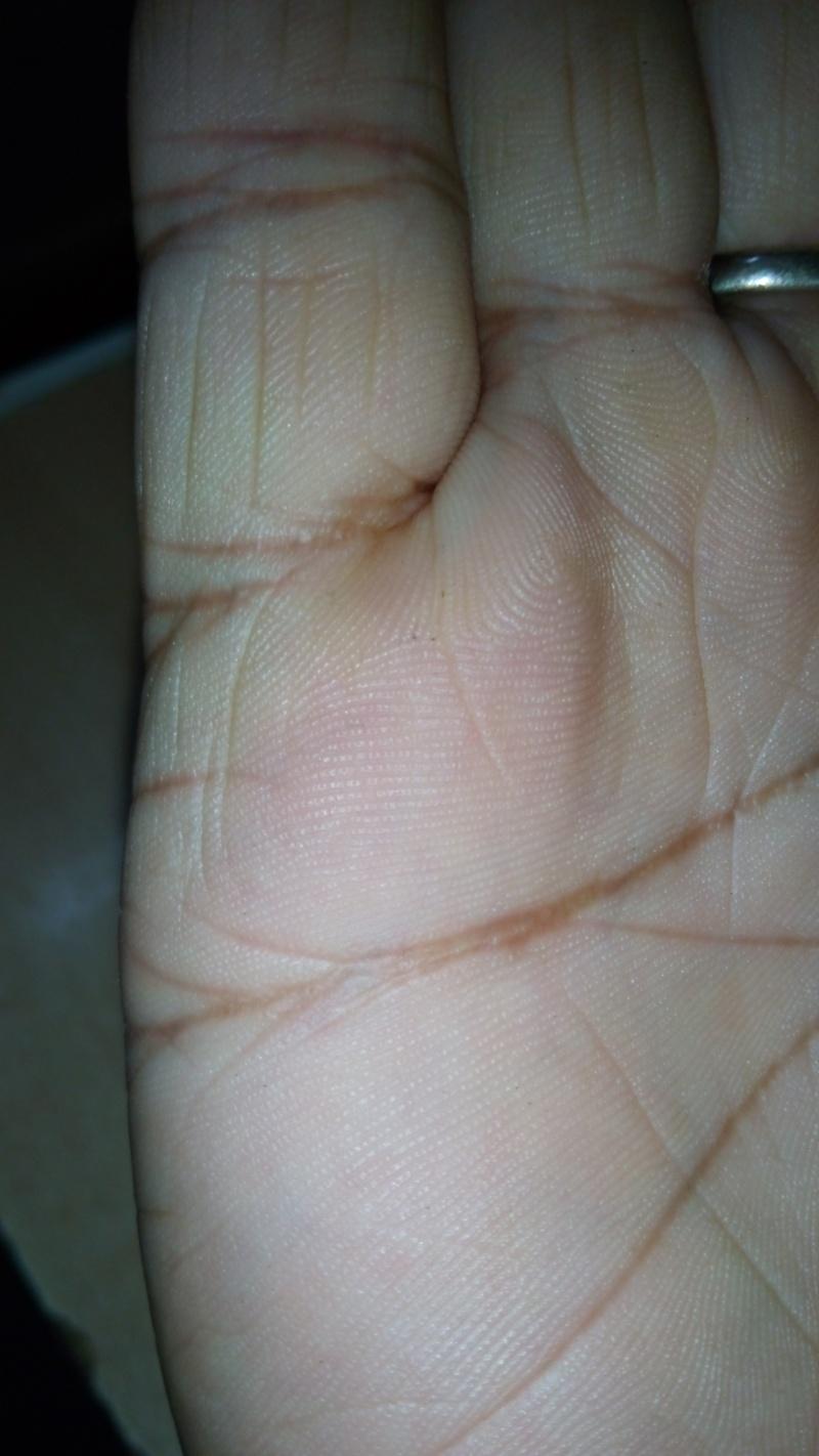 general palm reading plz 20143011