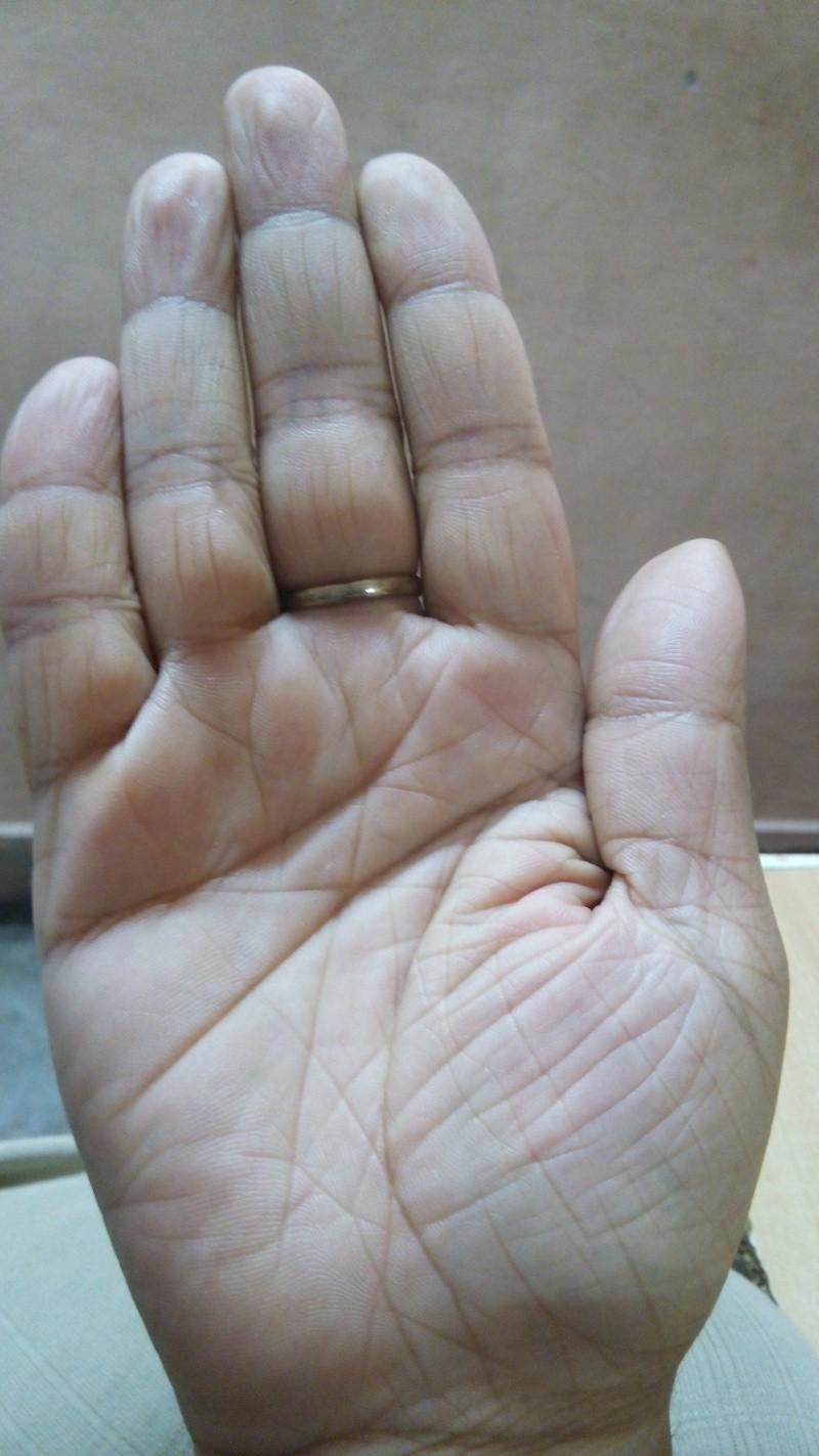 general palm reading plz 20143013