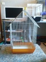 ma cage - Page 3 Cam00010