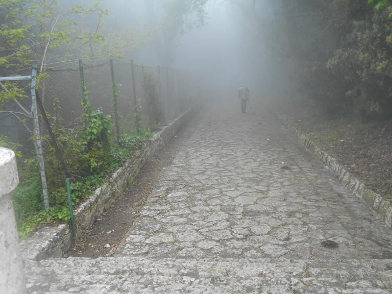 motori, automobilismo e nebbia (Erice aprile 2014) e  caldo torrido (giugno 2014) 13610