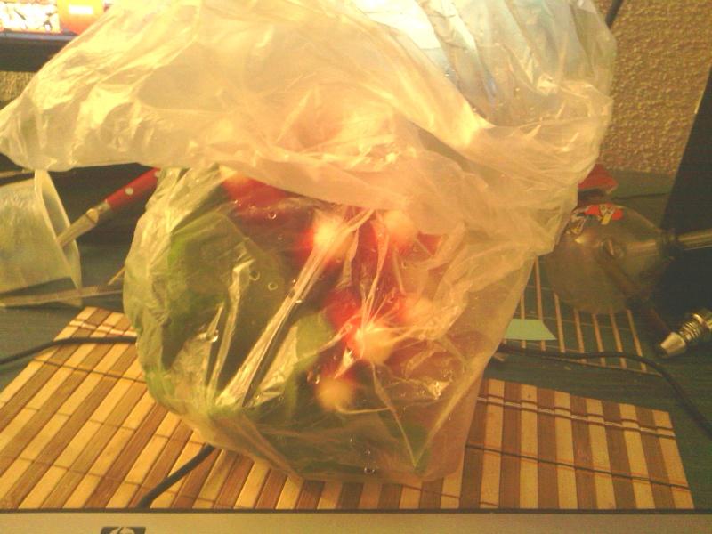 Oui je mange des légumes et alors ?? Radi12
