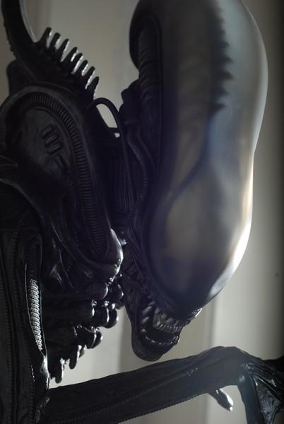 Collection n°490 : zezedaz - ALIEN & PREDATOR Alien_27