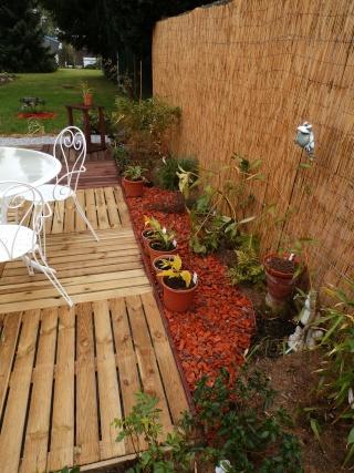 Phyllo - nouveau jardin - Page 2 P4110012
