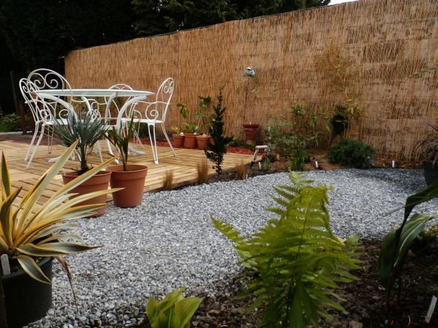 Phyllo - nouveau jardin - Page 2 P4110014