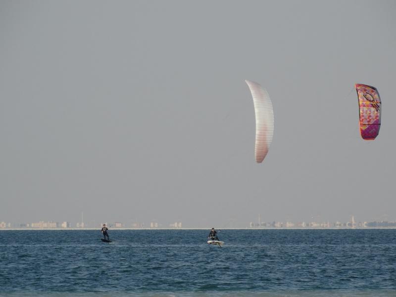 Ailes de kite Elf (à caissons) 11-00114