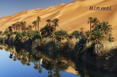 Amazigh - voila pourquoi l'Amazigh reste ancré a sa montagne Mgoune10