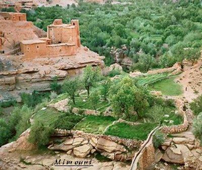 Amazigh - voila pourquoi l'Amazigh reste ancré a sa montagne Nature11