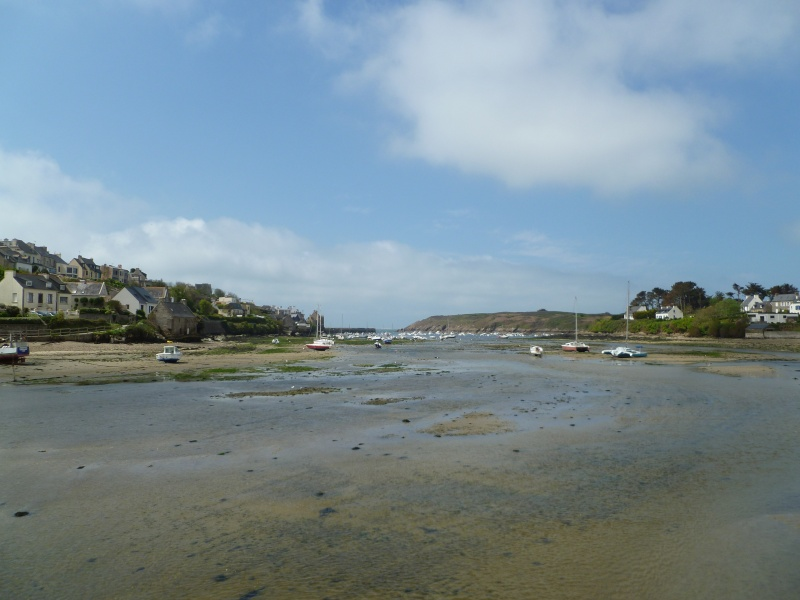 Mon petit séjour en Bretagne  P1080510
