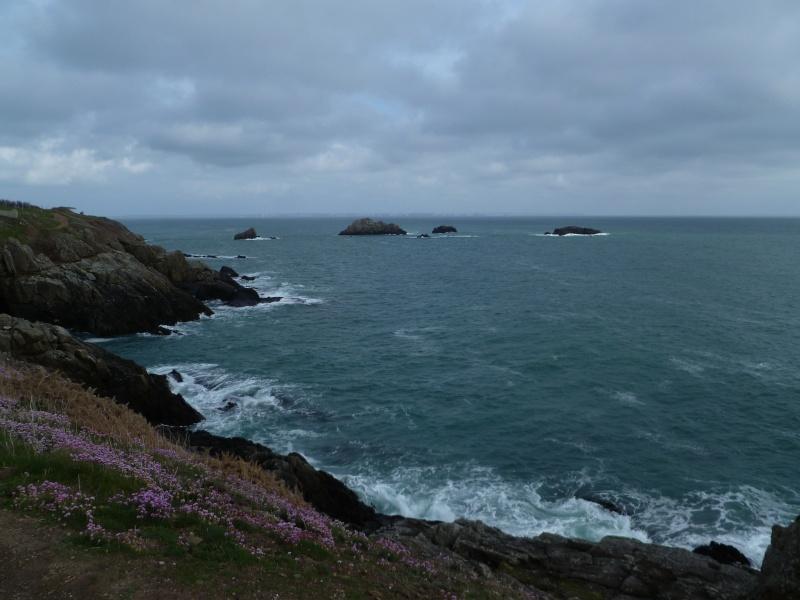 Mon petit séjour en Bretagne  P1080610