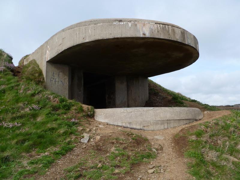 Mon petit séjour en Bretagne  P1080612