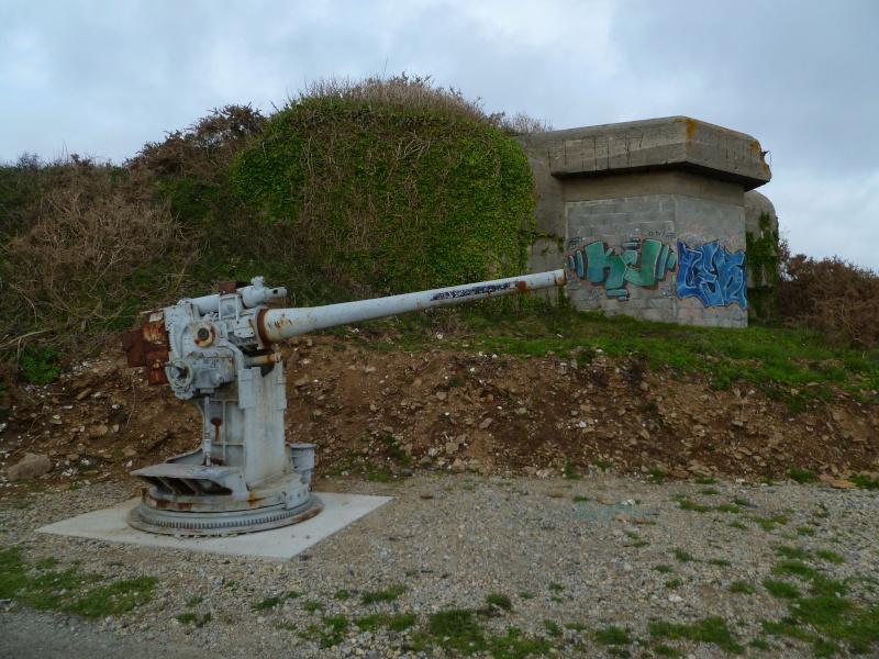 Mon petit séjour en Bretagne  P1080615