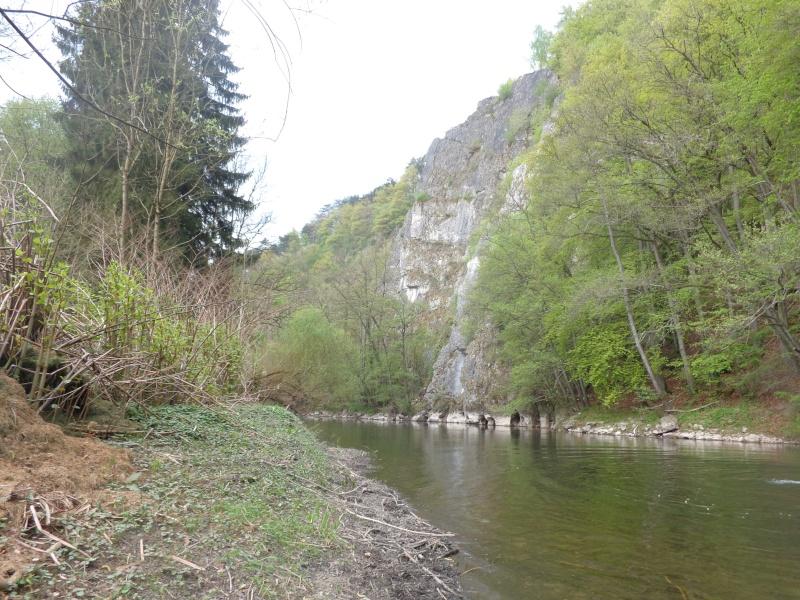 Ourthe de Bomal à Comblain-au-Pont Dsc01813