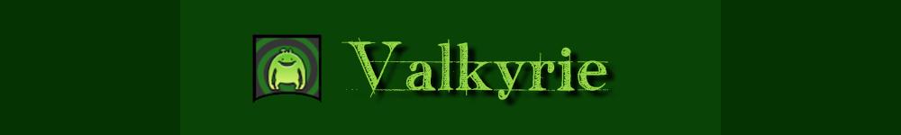 Valkyrie-FFXIV