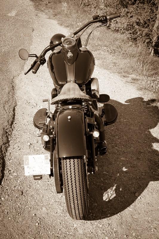 Combien de Softail sur le forum Passion-Harley - Page 13 24042033