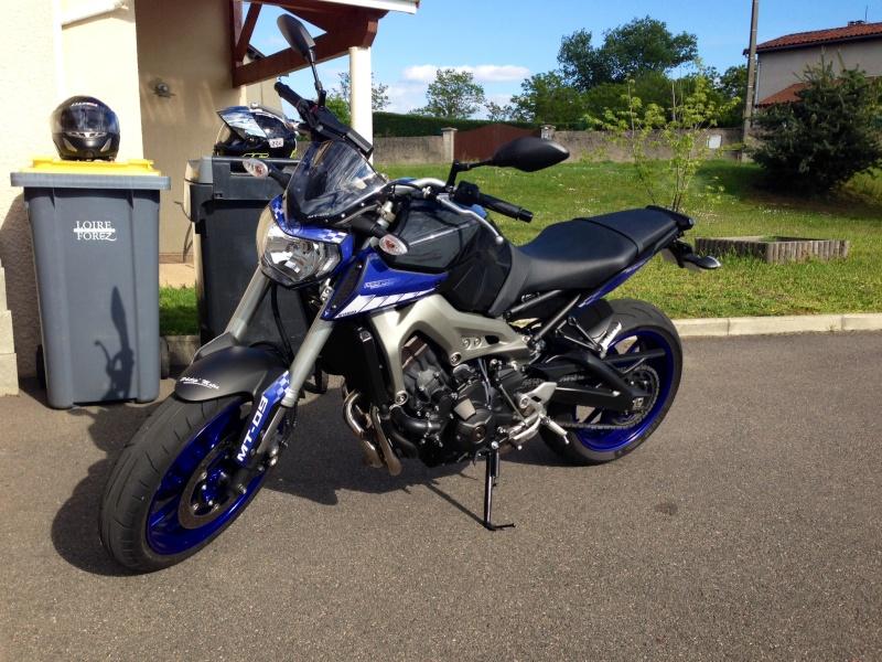 Nouvelle race blue Photo11