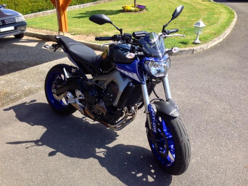 Nouvelle race blue Photo_10