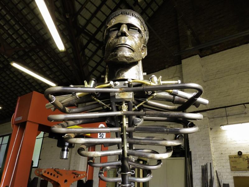 Frankenstein ..Projet en cours P1000413
