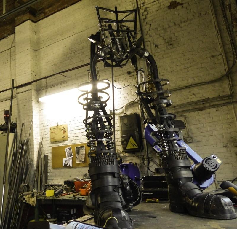 Frankenstein ..Projet en cours P1000416