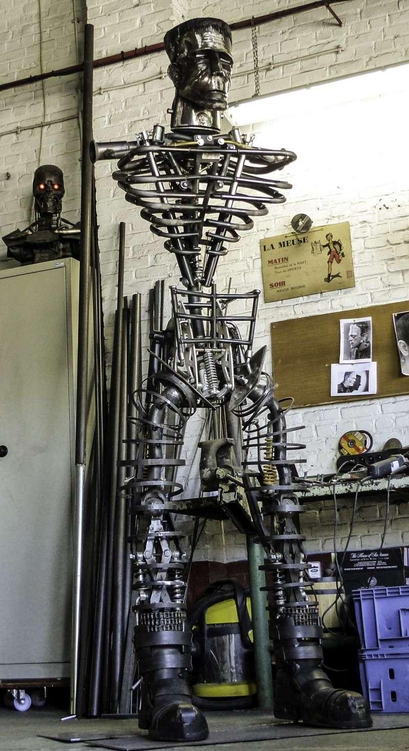 Frankenstein ..Projet en cours P1000518