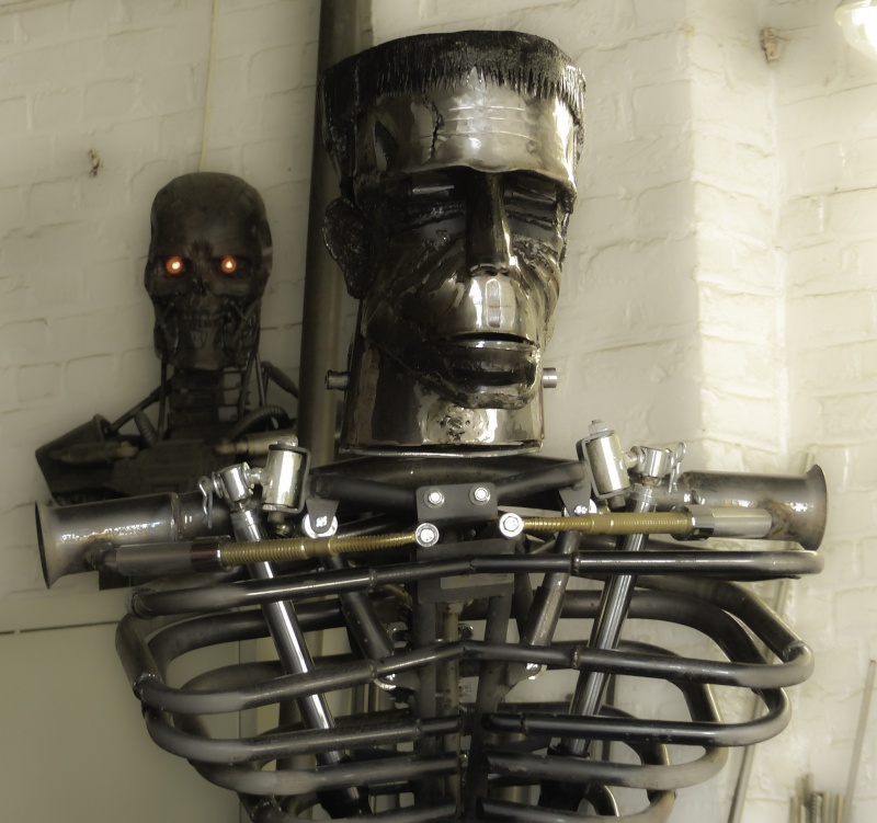 Frankenstein ..Projet en cours P1000519