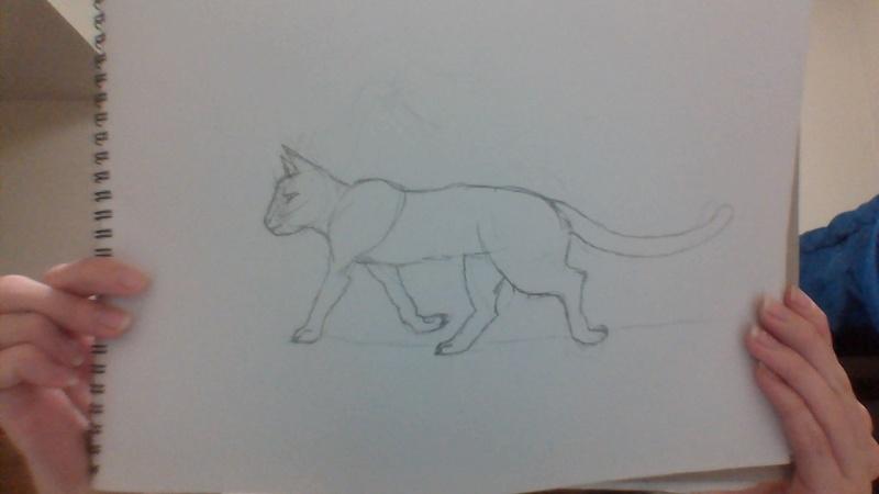 Bri's Art (Sketchbook and Digital) Win_2011