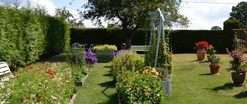 Un petit tour d'horizon de notre jardin...... 002_8018