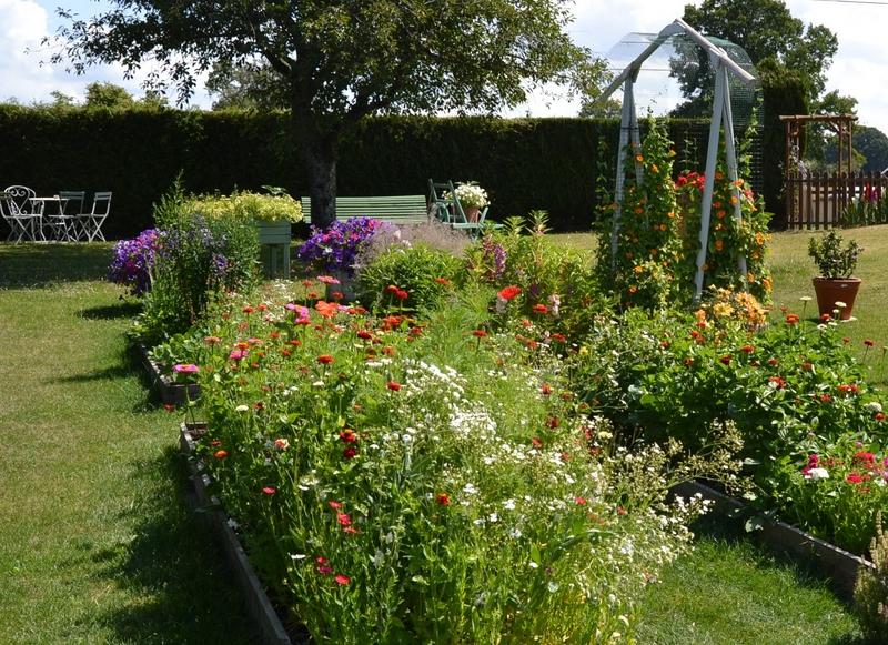 Un petit tour d'horizon de notre jardin...... 005_8020