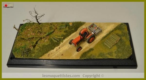 Tracteur International 1255 au 1/32° Marque Schuco ( terminé ) 005_8074