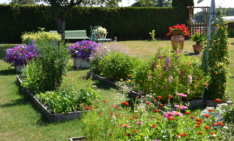 Un petit tour d'horizon de notre jardin...... 008_8013