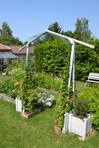 Un petit tour d'horizon de notre jardin...... 010_8012