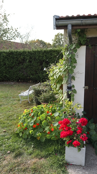 Le jardin des couleurs 021_8017