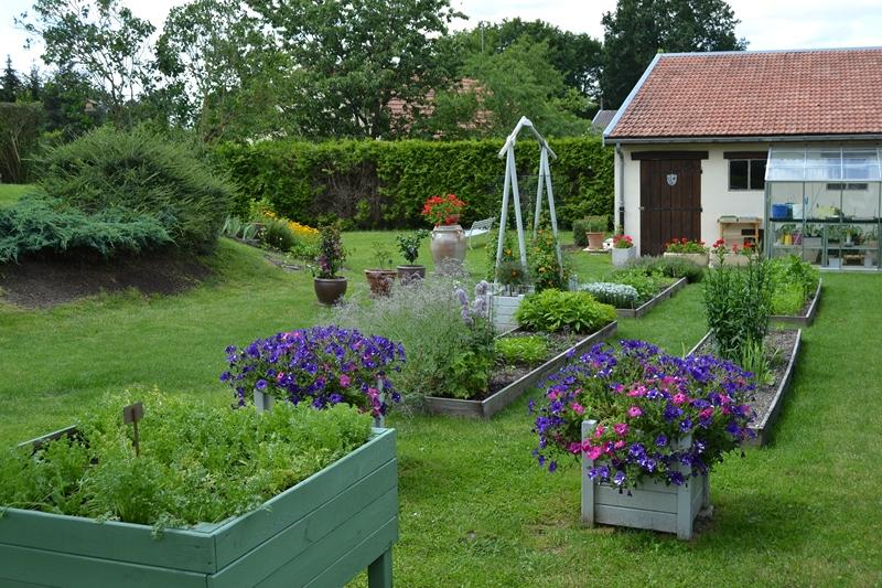 Un petit tour d'horizon de notre jardin...... 099_8010