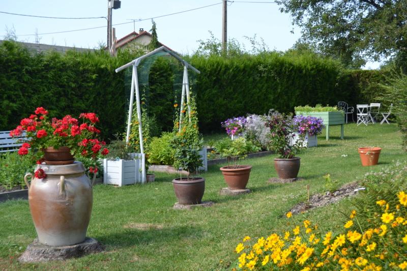 Un petit tour d'horizon de notre jardin...... Dsc_9712