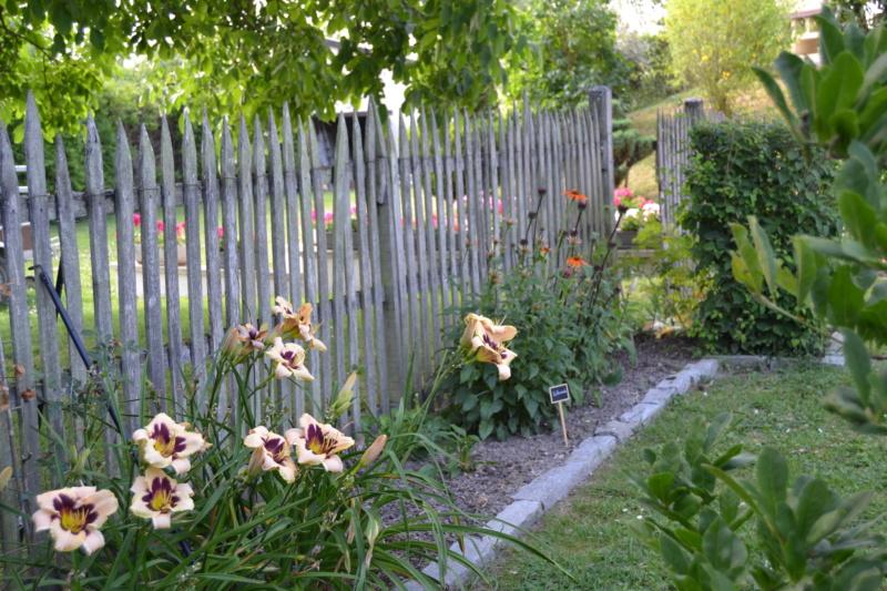 Un petit tour d'horizon de notre jardin...... Dsc_9714