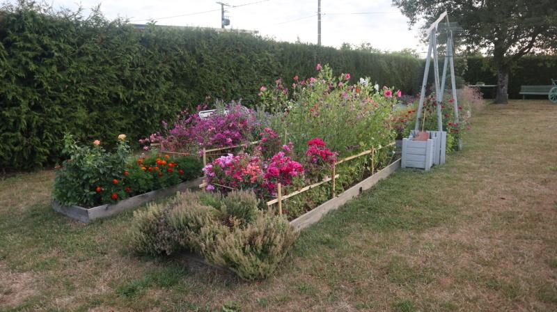 Promenade au jardin ce matin..... Img_0058