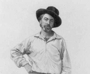 Walt Whitman 616x5110