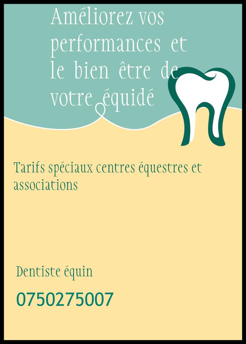 Dentiste équin Isère  Previe10